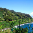 Coastline along the Road to Hana, Maui — Stock Photo #2364905