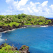 Black Sand Beach, Maui, Hawaii — Stock Photo #2365012