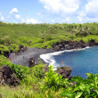 Black Sand Beach, Maui, Hawaii — Stock Photo