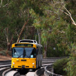 Bus on O-bahn Track, Australia — Stock Photo #2366348