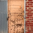 Unsual and Unique External Doorway — Stock Photo