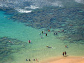 Aerial view of Snorkellers, Hawaii — Stock Photo