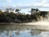 Geothermal Activity in Kuirau Park, NZ — Stock Photo