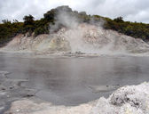 Geothermal Activity, Hells Gate, NZ — Stock Photo
