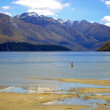 Man wading in Lake Wanaka, New Zealand — Stock Photo