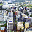 Aerial View of Auckland, New Zealand — Stock Photo #2460608