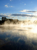 Geothermal Mists of Kuirau Park, NZ — Stock Photo
