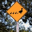 Duck Crossing Warning Road Sign — Stock Photo #2490371