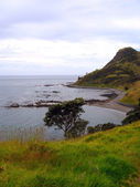 Coromandel Peninsula Coastline, NZ — Stock Photo