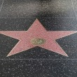 Hollywood star — Stock Photo #2266641