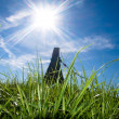 Stock Photo: Beautiful fresh grass at spring