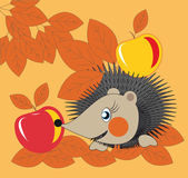 Hedgehog and apples — Stock Vector