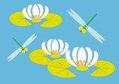 Dragonflies and lily — Stock Vector