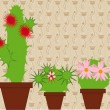 Flowering cacti in pots — Stock Vector