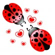 Loving ladybugs — Stock Vector