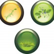 Three isolated buttons — Stock Vector