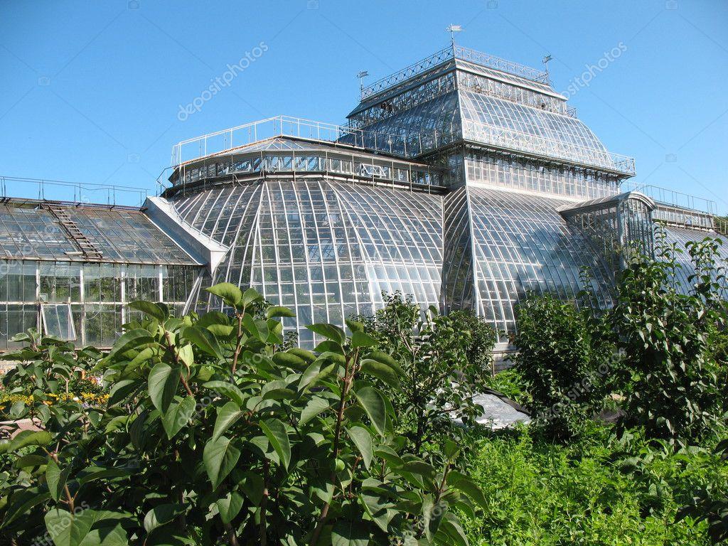 St Petersburg Botanical Garden Stock Photo Ilexcarrot 2545380
