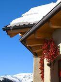Inverno austríaco — Foto Stock