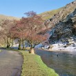 Stock Photo: Dovedale