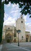 Palencia Cathedral 2 — Stockfoto