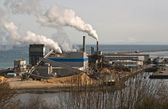 Paper Mill Industrial Plant — Stock Photo