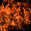 Flames Fire of Hell - Stock Photo