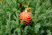 Garden tree with christmas decoration — Stock Photo