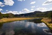 Creek in Yellowstone — Stock Photo