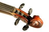 Violin scroll — Stock Photo