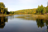 Forest lake at autumn — Stock Photo