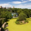 Stock Photo: Central Park in New York City