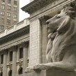 New York City Public Library — Stock Photo