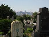 在纽约的公墓 — 图库照片