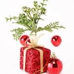 Gift — Stock Photo #2543255