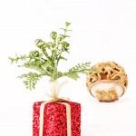 Gift — Stock Photo #2543302