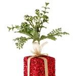 Gift — Stock Photo #2543320