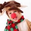 Reindeer Rudolph — Stock Photo