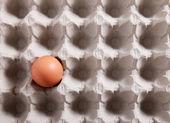 Ei in einer Packung — Stockfoto