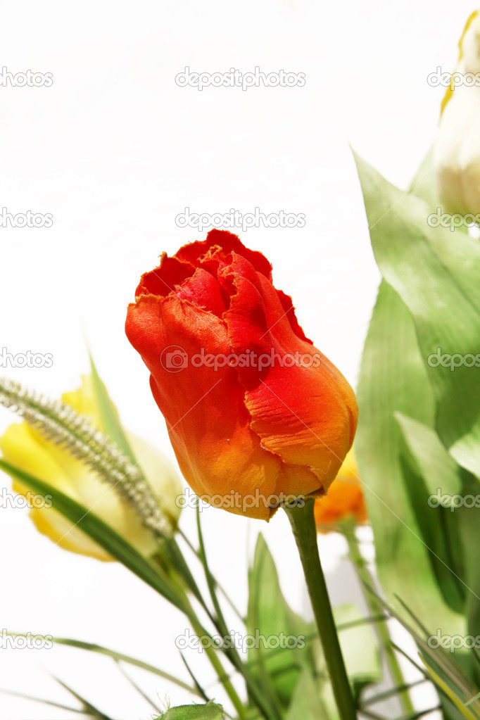 Beauty artificial flowers over white background. Orange and yellow — Stock Photo #2543237