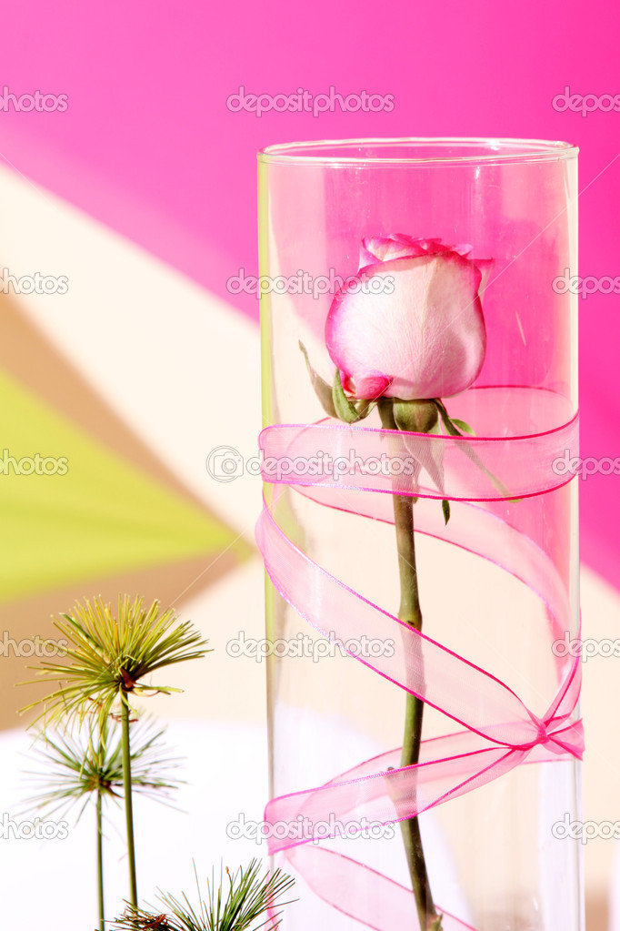 Rose on glass over green and fuchsia background — Stock Photo #2544059