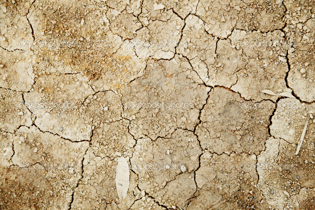 Infertile Land Texture of Dry And Infertile Land Abstract Background Photo by Yupiramos