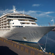 A luxury cruise ship docked in the port — ストック写真