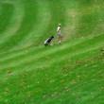 Golfing — Stock Photo #2344013