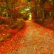 Colorful Autumn Road — Foto de Stock