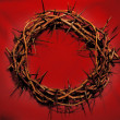 Crown of Thorns — Stock Photo #2368612