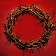 Stock Photo: Crown of Thorns