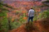 Beauty of West Virginia — Stock Photo