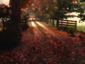Dreamy Red Autumn Road — Stock Photo