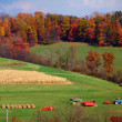Pennsylvania Farmland - Stock Photo