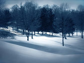 Blanket of Snow — Stock Photo